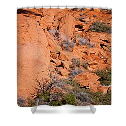 Red Rocks Shower Curtain by Rae Tucker