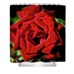 Red Rose 1a Shower Curtain