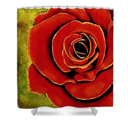 Red Rose Blooms Shower Curtain