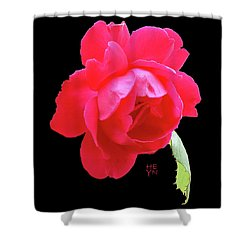 Red Rose Cutout Shower Curtain