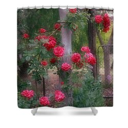 Red Rose Dream Shower Curtain