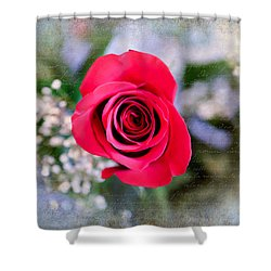 Red Rose Elegance Shower Curtain
