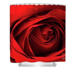 Red Rose Flower Shower Curtain
