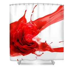 Red Rose Shower Curtain by Gabriella Weninger - David