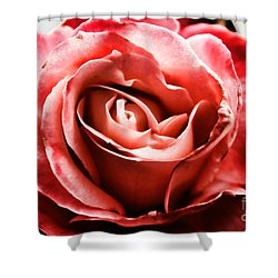 Red Rose  Shower Curtain by Mariola Bitner