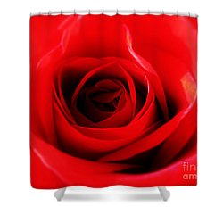 Shower Curtain featuring the photograph Red Rose by Nina Ficur Feenan