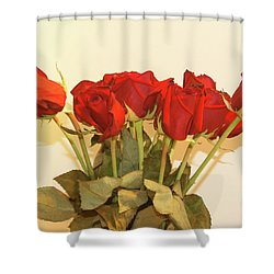 Red Rose Portrait Shower Curtain