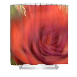 Red Rose Shower Curtain by Yelena Tylkina