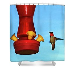 Red Ruby Shower Curtain