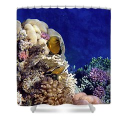 Red Sea Exotic World Shower Curtain