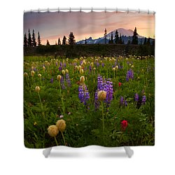 Red Sky Meadow Shower Curtain by Mike  Dawson