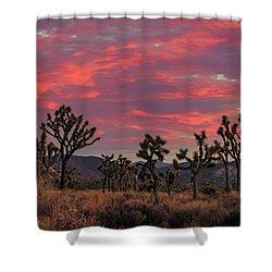 Red Sky Over Joshua Tree Shower Curtain