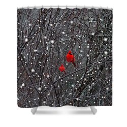 Red Snow Shower Curtain by Bill Stephens