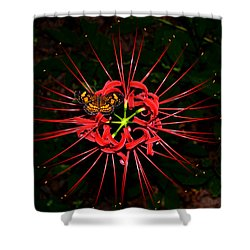 Red Spider Lily And Painted Lady Butterfly 001 Shower Curtain