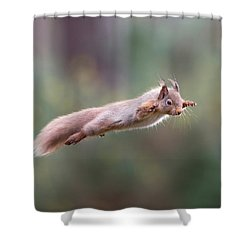 Red Squirrel Leaping Shower Curtain
