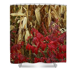 Shower Curtain featuring the photograph Red Stalker by J L Zarek