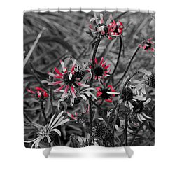 Red Streaks Shower Curtain by Deborah  Crew-Johnson