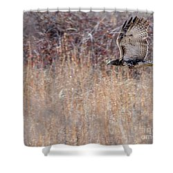 Red Tail Flight Shower Curtain