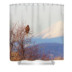 Red-tailed Hawk And Mount Shasta - Northern California Shower Curtain
