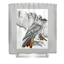 Red-tailed Hawk Shower Curtain