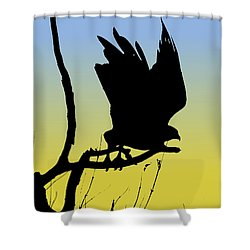 Red-tailed Hawk Taking Flight Silhouette At Sunrise Shower Curtain