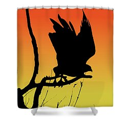 Red-tailed Hawk Taking Flight Silhouette At Sunset Shower Curtain