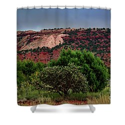 Shower Curtain featuring the photograph Red Terrain - New Mexico by Diana Mary Sharpton
