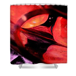 Red Tomatoe Two Shower Curtain