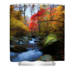 Red Tree In White Oak Canyon Shower Curtain