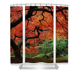 Red Tree Shower Curtain by James Roemmling