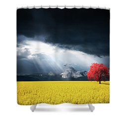 Red Tree On Canola Meadow Shower Curtain