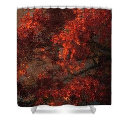 Red Tree Scene Shower Curtain by Mikki Cucuzzo