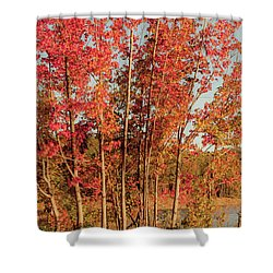 Shower Curtain featuring the photograph Red Trees by Iris Greenwell