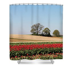 Red Tulips Landscape Shower Curtain