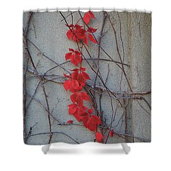 Red Vines Shower Curtain