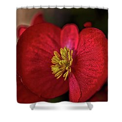 Red Wax Begonia Shower Curtain