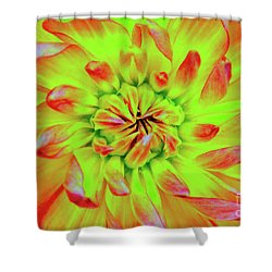 Red Whirl Shower Curtain