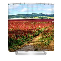 Shower Curtain featuring the photograph Red White Blue by Jerry Sodorff