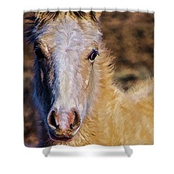 Red Willow Pony Shower Curtain