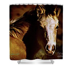 Red Willow Pony Lx Shower Curtain