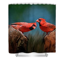 Redbird Sentinels Shower Curtain by Bonnie Barry