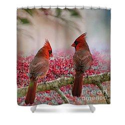 Redbirds At Dusk Shower Curtain