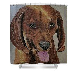 Redbone Coonhound Shower Curtain