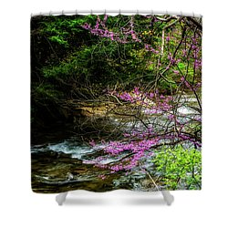 Redbud And River Shower Curtain