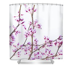 Redbud Shower Curtain
