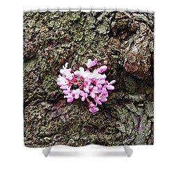 Redbud Flowers 1  Shower Curtain by Sarah Loft