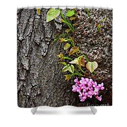 Redbud Flowers 2 Shower Curtain by Sarah Loft