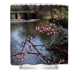 Redbuds And An Old Bridge Shower Curtain