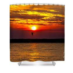 Redeye Flight Shower Curtain