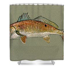Redfish Watercolor Painting Shower Curtain